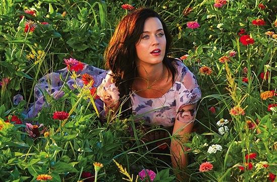 är Niall verkligen dating Katy Perry